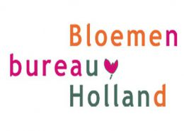 wordpress website Bloemenbureau