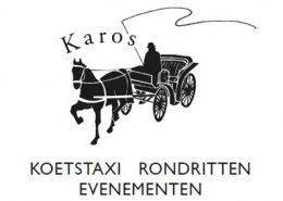 wordpress website Karos