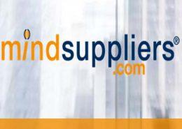 mindsuppliers-jpwebsites